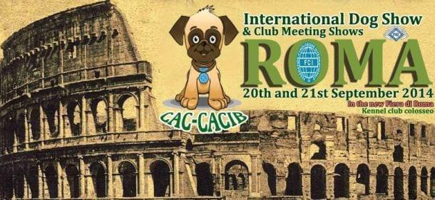 Concorso Internazionale di Roma