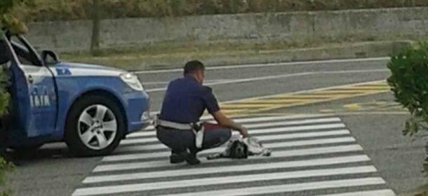 Un poliziotto si china ad aiutare un cane in mezzo all'autostrada. La verità sulla foto diventata virale