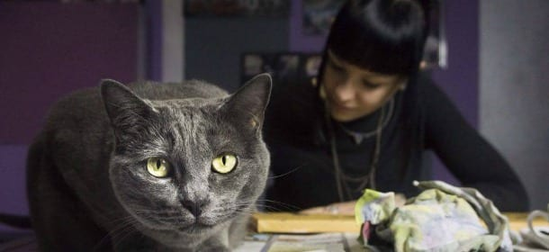 """Marianna, il progetto fotografico Passions e l'amore per i gatti: """"I veri amici condividono tutto"""""""
