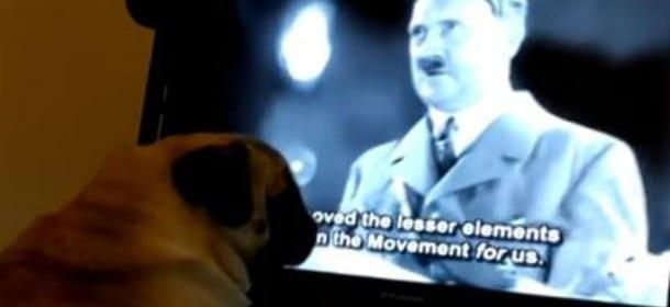 Insegna al cane il saluto nazista: youtuber arrestato [VIDEO]