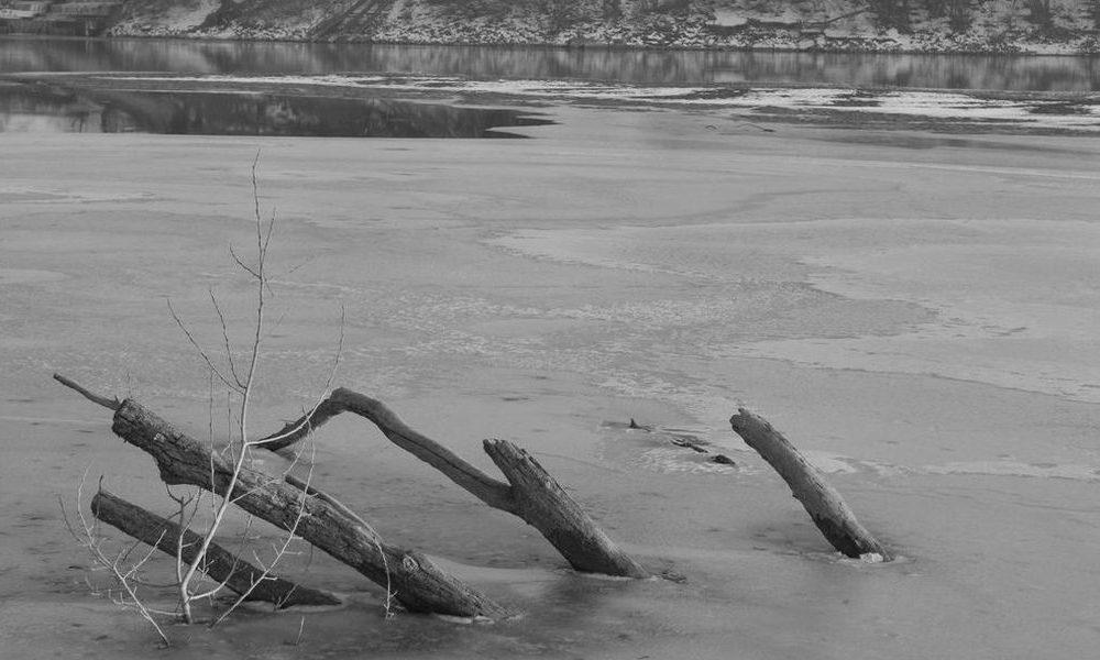 Pescata nel lago una misteriosa creatura. Sembra una 'sirena' [VIDEO]
