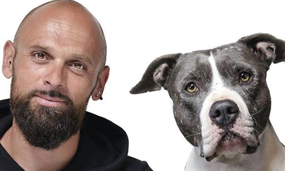 Simone Dalla Valle: 3 domande da farsi prima di prendere un cane [VIDEO]