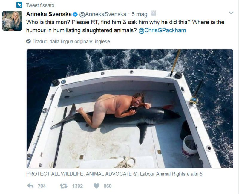 Nudo su uno squalo morto: è caccia all'uomo sul web
