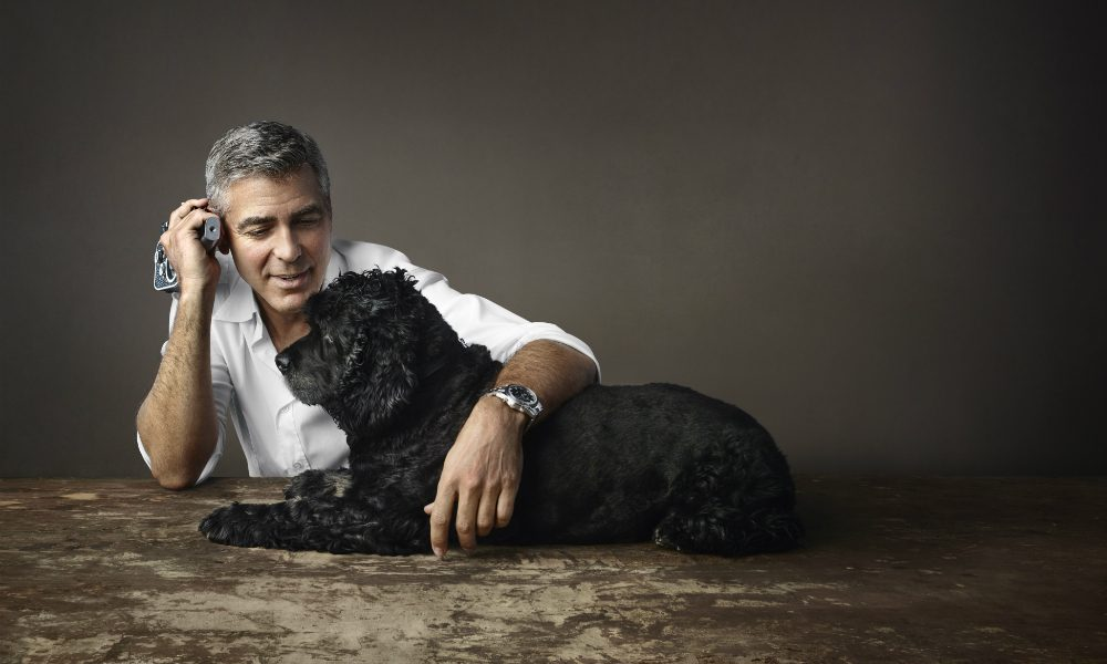 George Clooney dona 10.000 dollari per salvare nove cani