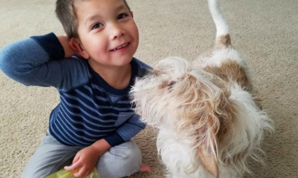 Il bimbo di 4 anni vorrebbe un cane, quando la mamma gli dice di no...