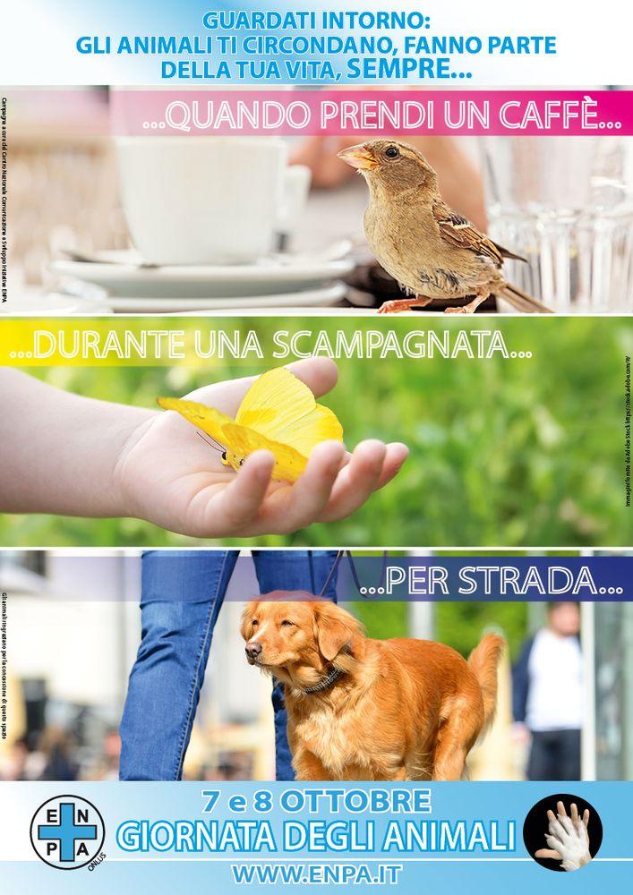 La Giornata degli Animali: un imperdibile appuntamento per i quattro zampe