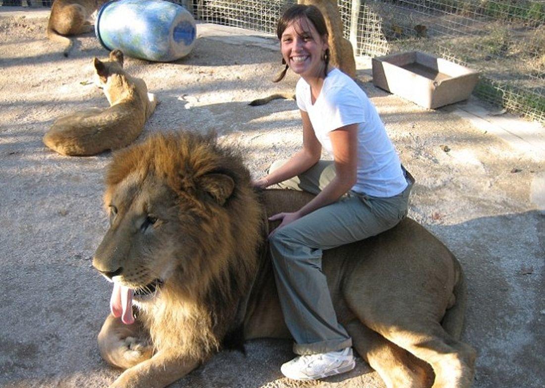 Immagini shock: animali drogati allo zoo per scattare foto con i turisti
