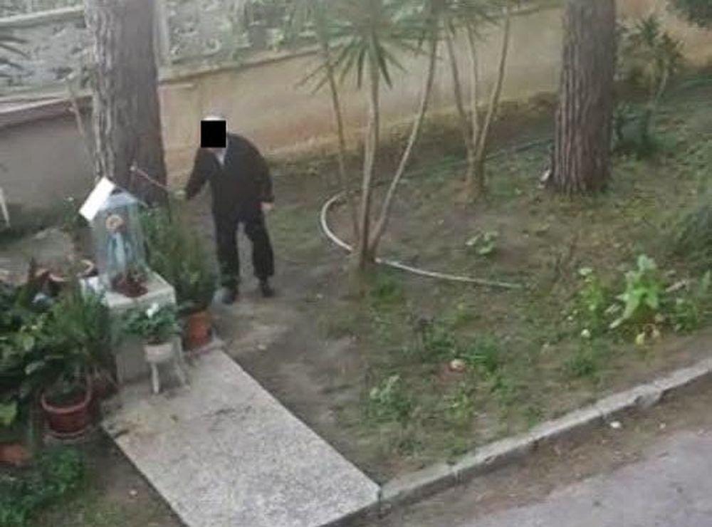 Condanna esemplare per il bastonatore di gatti di Brindisi: finirà in prigione