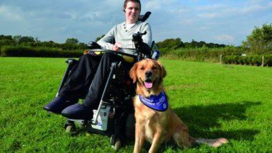 È completamente paralizzato: la miglior cura è il suo cane
