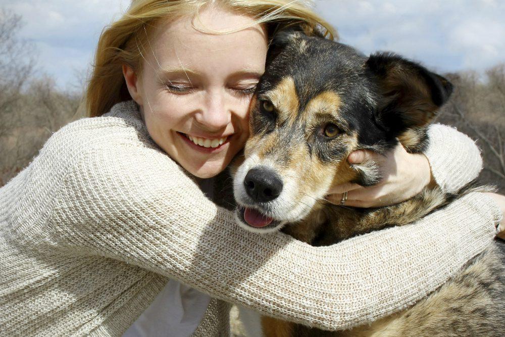 """""""L'esperto risponde"""" - Salmonellosi da cane a uomo: come avviene il contagio"""