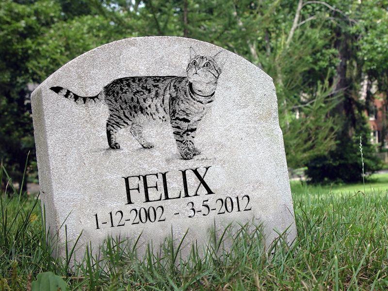 Seppellire cani e gatti nelle tombe di famiglia: una proposta di legge che potrebbe diventare realtà