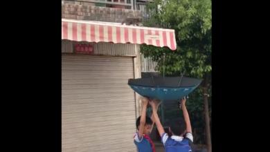 Gattino in bilico su una tenda: due bambini lo vedono e fanno qualcosa di incredibile [VIDEO]