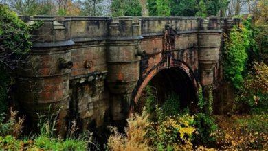 Il mistero del ponte dei suicidi: 600 cani si sono lanciati nel vuoto