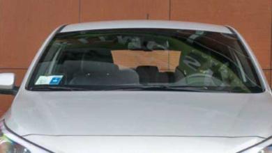 Urta qualcosa con l'auto: si ferma e non crede ai suoi occhi [VIDEO]