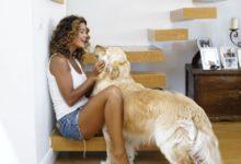 Samantha De Grenet cani