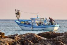 Siracusa pescatore incontra cinghiali