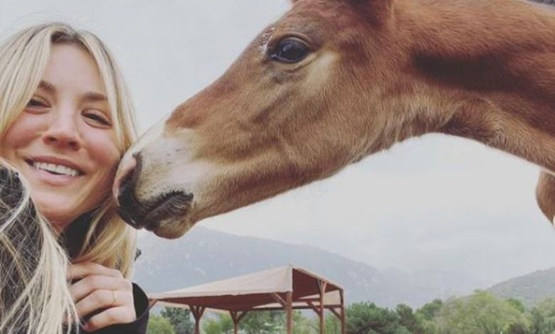 Kaley Cuoco cavallo maltrattato Olimpiadi