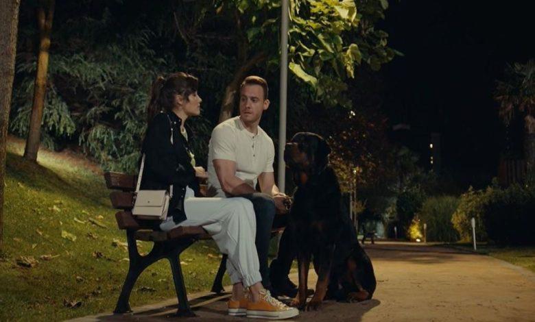 Morto Sirius il cane della serie