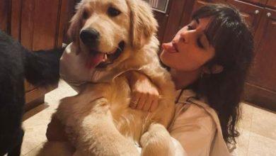 Camila Cabello cani