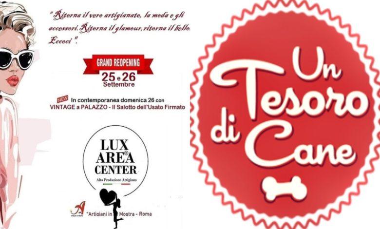Lux Area Center Un Tesoro di Cane