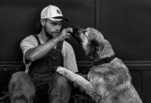 effetti voce umana cani